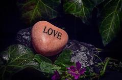 Corazón (Pepenera) Tags: lookingcloseonfriday corazón cuore heart foglie stilllife love