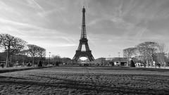 Tour Eiffel B&W  with Panasonic GX7 (Boutillier Geoffrey) Tags: arts french cars rue garden jardin noiretblanc bw nb large tourisme travel exterieur grandangle photo leica 818 gx7 panasonic gustave histoire monument city france capitale champdemars eiffel tour