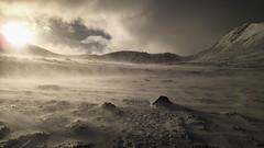 Morning walk-in to Coire an t-Sneachda in wind (Masa Sakano) Tags: activity cairngorms coireantsneachda highland place scotland climbing scenery winterclimbing