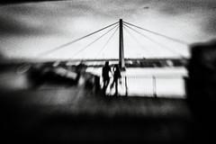 3383 (Elke Kulhawy) Tags: blackandwhite cologne monochrome lensbaby lensbabycomposer grain grainy bnw bw bwphotographie bnwbw unscharf dark bridge köln city stadt wasser rhein centrum
