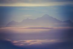Le Mont-Blanc dans un mélange de soleil et de brume. (bewo22) Tags: alpes alps cloudsmist landscapes leverdesoleil montagne mountain nuagesbrume paysages sunrise paisaje brouillard niebla fog montaña montblanc gex ain france fr groupenuagesetciel