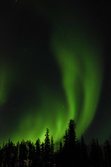 March Madness-157 (juan_guthrie) Tags: yellowknife nwt northernlights
