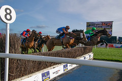 DSC_0620 (fullerton42) Tags: straftford racecourse stratfordracecourse horse horses racehorse horseracing race punter punters specatators sport equine england
