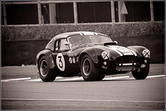 7D2_2088 (Colin RedGriff) Tags: mm77 cars cobra goodwood grahamhilltrophy membersmeeting racing chichesterdistrict england unitedkingdom gb