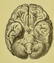 metaphysical image