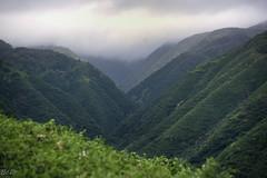 Maui2019 (8 of 43) (bcdixit) Tags: nikond750 hawaii maui