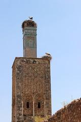 Stork on Minaret, Chellah (Buster&Bubby) Tags: berber mosque almohad romanruins sala shalla phoenecians minaret chellah