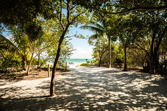 Come to the Beach (JimmyJGreen) Tags: florida february summer sanibel island beach sand shore palms