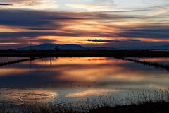 Magic.., (BrynnAvon) Tags: shadow 2descriptors landscape sunset nature dawn 3subject colour pentax countryside water sun k1 flora clouds reflection light 1specs sky ways ba54 coast animal wildlife