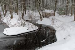 quabbinreservoir2019-90 (gtxjimmy) Tags: nikond7500 nikon d7500 winter snow quabbinreservoir swiftriver ware belchertown massachusetts watersupply newengland quabbin