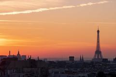 Sous Le Ciel De Paris (sdupimages) Tags: flickunitedaward rooftop toureiffel eiffeltower silhouette couchédesoleil goldenhour city paris sunset horizon landscape cityscape ville soleil sun light street rue toits