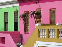 The colours of Bo-Kaap (__ PeterCH51 __) Tags: bokaap malayquarter capetown westerncape southafrica za color colour colorful colourful houses housewalls pink green greenhouse pinkhouse colourfulhouses peterch51
