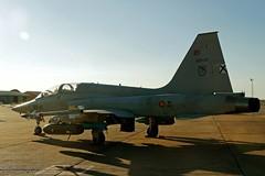 F-5 del Ala 23 (Ejército del Aire Ministerio de Defensa España) Tags: aviación aviation militar military avión aeronave aircraft airplane ejércitodelaire fuerzaaérea airforce airbase baseaérea caza jet fighter f5 northropf5m freedomfighter ae9
