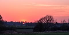 Wistow (Peter Leigh50) Tags: field farmland farm fujifilm fuji xt2 leicestershire landscape landschaft trees tree sky sunshine sheep sunset evening rural countryside