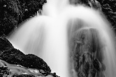 2017 Roughlock Falls In Monochrome 27 (DrLensCap) Tags: roughlock falls in monochrome spearfish canyon scenic drive black hills national forest south dakota sd waterfall bw and white 40 day adventure robert kramer