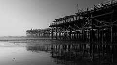 My Old Friend (Rand Luv'n Life) Tags: odc our daily challenge shadows moods crystal pier pacific beach san diego california sand reflections pilings christmas tree cottages monochrome blackandwhite outdoor simple life love friendship memories