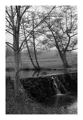 La petite cascade (DavidB1977) Tags: france îledefrance seineetmarne ferrièresenbrie fujifilm x100f monochrome bw nb taffarette cascade
