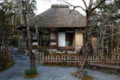 SDQ_1138 (koyaman3422) Tags: 京都 kyoto sigma sdquattro 1770mm 落柿舎