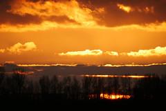 Orange sunset (yvonnepay615) Tags: panasonic lumix gh4 nature sunset rspb lakenheath suffolk eastanglia uk coth