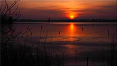 Winter sunset at the lake (Ostseetroll) Tags: deu deutschland geo:lat=5403804780 geo:lon=1069856640 geotagged pönitzamsee scharbeutz schleswigholstein winter sonnenuntergang see sunset lake spiegelungen reflections pönitzersee eis ice olympus em5markii