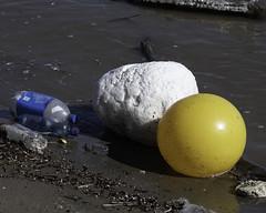 MississippiRiver_SAF0985 (sara97) Tags: pollution copyright©2019saraannefinke environment mississippiriver missouri photobysaraannefinke plastic river saintlouis