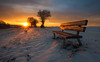 sit down and enjoy (Lena Held) Tags: explore explored new photo photography nature natures landschaft landscape travel global germany german bavaria bayern oberpfalz upperpalatinate canon 5dsr 1635mm wowplanet scarf square squareformat ourworld world sunset sundown sunlight light lights sunny afterglow sunstar shine blendenstern bench snow winter snowy icy ice