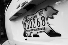 """Spectacular Northwest Territories"" (Eric Flexyourhead) Tags: vancouver canada britishcolumbia bc gastown waterstreet city urban detail fragment truck suv chevrolet chevy plate licenseplate numberplate bear polarbear northwestterritories monochrome blackwhite bw ricohgr"