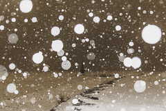 Disappearing acts (aerojad) Tags: eos canon 80d dslr 2019 chicago urban snow snowing winter february bokeh snowkeh outdoors city lakemichigan night nightphotography nightscape winterscape snowscape