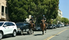 #SaturdayAfternoon in #SanFrancisco (Σταύρος) Tags: onhorseback parkpolice sfpd police mountedpolice sanfrancisco thecity marinagreen saturdayafternoon marinadistrict sf city sfist санфранциско sãofrancisco saofrancisco サンフランシスコ 샌프란시스코 聖弗朗西斯科 سانفرانسيسكو kalifornien californië kalifornia καλιφόρνια カリフォルニア州 캘리포니아 주 cali californie california northerncalifornia カリフォルニア 加州 калифорния แคลิฟอร์เนีย norcal كاليفورنيا