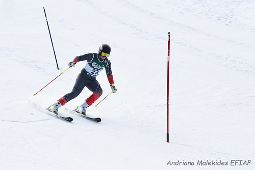 Alpine Races I & II Feb 2019_12