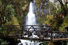 Sumak Fackchalla - Cascada Milagrosa (Hidalgo Paul) Tags: agua vida cascada ecuador naturaleza verde flujo natural sueño magico increible
