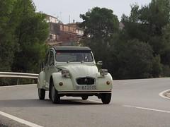 21848757593_efef2023d1_o (amigoscv) Tags: 2on classic car festival 2015