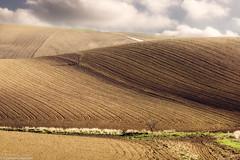 Boh (SDB79) Tags: colline molise ururi rotello agricoltura terra aratura