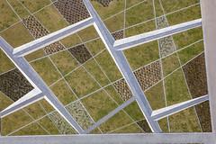 Landscape Design (Aerial Photography) Tags: by m obb 28032007 5d017323 bavaria bayern braun deutschland farbe fotoklausleidorfwwwleidorfde fotoklausleidorfwwwleidorfaerialcom gartengestaltung germany grafik grau grün kopenhagenstrase landscapeandnature landschaft landschaftnatur linien luftaufnahme luftbild messestadtriem munich münchen p1 park senkgarten weis abstract abstrakt aerial brown color colour gardenlandscaping graphicart graphics green grey landscape landscapenature lines nature outdoor sunkengarden verde white bayernbavaria deutschlandgermany deu