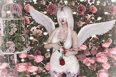 Heaven Must Be Missing An Angel (Gabriella Marshdevil ~ Trying to catch up!) Tags: sl secondlife cute kawaii angel sweetthing candykitten foxy genus pinkfuel