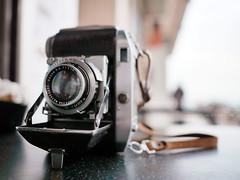 Welta Weltini II (Steve only) Tags: welta weltini ii foldingcamera 老折 rf rangefinder cameraandlens panasonic lumix dmcgm1 m43 olympus mzuiko digital 17mm 118 f18 1718