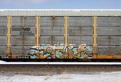 TCI (quiet-silence) Tags: graffiti graff freight fr8 train railroad railcar art tci trainchampsinc autorack ns norfolksouthern ttgx254103
