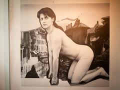 Maria Papadimitriou - L'enigma e la Sfinge 2016 stampa fotografica 205x205 cm (anto291) Tags: vetrinedilibertà lalibreriadelledonne fabbricadelvapore arte artecontemporanea art contemporaryart