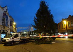 Felling time (stevenbrandist) Tags: loughborough morning christmastree fell tree towncentre fordtransit dangertape