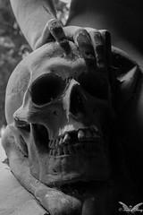 Genova, Cimitero Monumentale di Staglieno (Sven Kapunkt) Tags: statue staglieno cemetery cemeteries cimetière campo cimitero certosa friedhof friedhöfe gräber grab graveyard grabmal gothic grabstätte genova genua italia italien italy ligurien liguria
