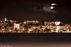 Lobo hoimbre en Conil (frankalf37) Tags: otoño arena artística cadiz castle clouds cloudy conil iglesia moon moonlight nightshot sand streetlamp streetlight tower town tree urban