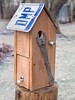 PC160020 (bvriesem) Tags: bird house birdhouse craft wood carpentry
