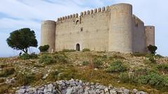 La Fortalesa. (josepponsibusquet.) Tags: castell castillo montgrí castelldelmontgrí torroella torroellademontgrí baixempordà catalunya catalonia cataluña mòbil móvil samsung samsungs8 arbre arbol