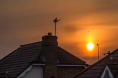 Addlestone sunset (20190409_3) (Graham Dash) Tags: addlestone sunsets sunsetsaddlestone 2019pad