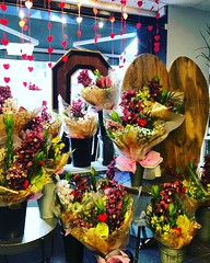 These stunning orchid bouquets are always a winner. Cymbidiums and anthuriums for a long lasting and exotic bouquet. Click the link in our bio to order a bouquet today ❤❤❤ . . #parsleyandsageflorist #stokeontrent #orchidsofinstagram #orc (parsleyandsage11) Tags: orchidsofinstagram romance valentinesday2019 anthurium valentinesdaygifts valentinesdaygiftideas valentinesdaygift orchids flowersofinstagram flowerbeauties valentinesdayflowers bemyvalentine truelove parsleyandsageflorist valentines orchidlove valentinesday stokeontrent