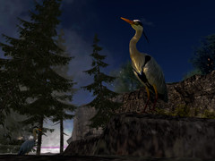 The lookout at Authors Point (Tevor Z) Tags: birds bird seabird rock trees night secondlife virtualworld
