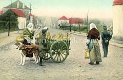X990011 arbeitshund belgien (stadt + land) Tags: hunde hund bilder fotos arbeitshund historisch früher aufgabe transport alte fotografien
