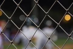 On ne passe pas! (AlainC3) Tags: filetprotecteur backstop baseball bokeh grillage nikond7500 floue blur dof profondeurdechamp