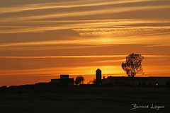 La Serena au couchant   at sunset ([ ͆ ◎] Bernard LIÉGEOIS) Tags: espagne españa spain estrémadure extremadura laserena paysage landscape couchant coucherdesoleil soleilcouchant sun sunset