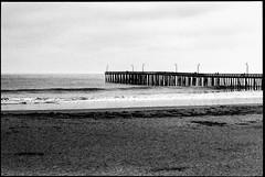 Cayucos Pier (greenschist) Tags: california usa cayucos asahipentaxspotmaticii pacifcocean blackwhite film supertakumer55mmf18 35mm analog cayucospier kodaktrix400